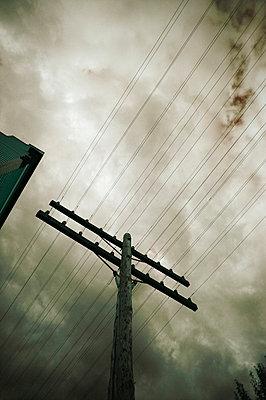 Telegraph wires - p4420935f by Design Pics