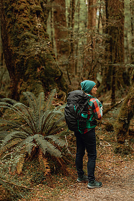 Hiker exploring forest, Queenstown, Canterbury, New Zealand - p924m2098263 by Peter Amend