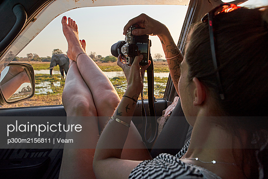 Woman taking a picture of an elephant out of the car window, Khwai, Botswana - p300m2156811 by Veam
