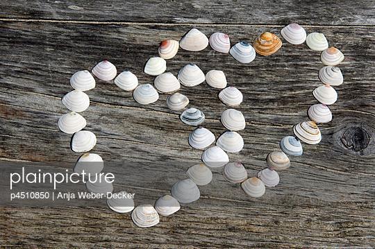 Muschelherzen - p4510850 von Anja Weber-Decker