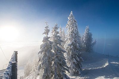 Winterlandschaft - p1142m1496427 von Runar Lind