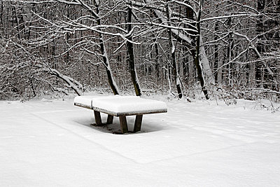 Snowy ping pong table - p300m700557f by Anja Bäcker