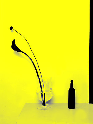 Flamingo flower and wine bottle - p1413m2071118 by Pupa Neumann