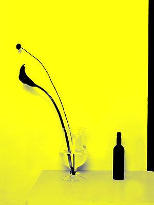 Flamingoblume und Weinflasche - p1413m2071118 von Pupa Neumann