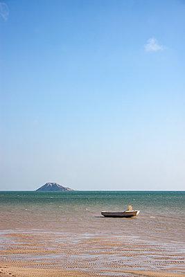 Île du Dragon - p754m1445577 von Valea Diller-El Khazrajy