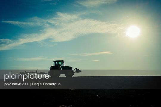 Feldarbeit - p829m949311 von Régis Domergue