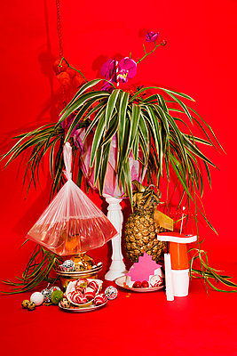 Indoor plant and other objects - p801m2065388 by Robert Pola