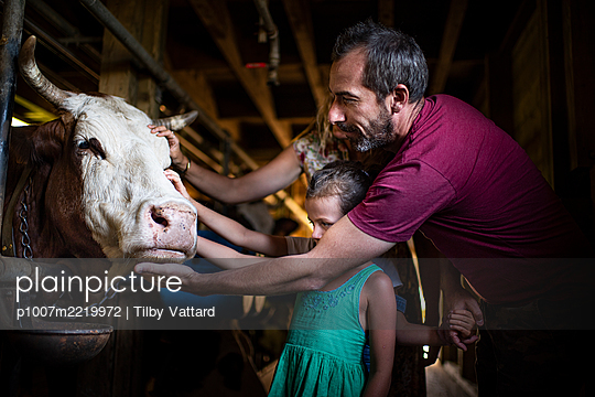 Father and daughters in cow stable - p1007m2219972 by Tilby Vattard
