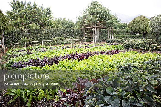 Vegetable garden with many beds - p1640m2254735 by Holly & John