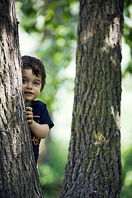 Young boy peeking out from behind tree - p44210058 by Daniel Sicolo