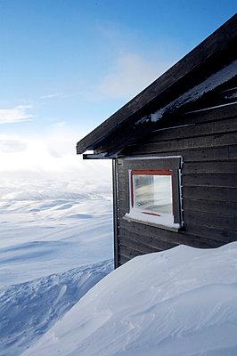 Log cabin - p6441165 by Paul Miles