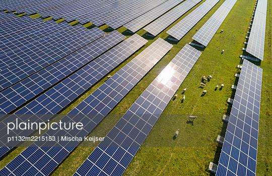 Schafherde und Solarenergie - p1132m2215153 by Mischa Keijser