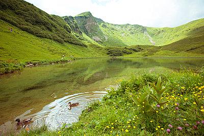 Idyllischer See - p432m917785 von mia takahara