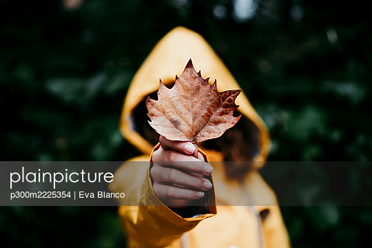 Girl in raincoat hiding face behind dry ivy leaf while standing against leaf wall - p300m2225354 by Eva Blanco