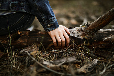 hand in forest - p1166m2130640 by Cavan Images