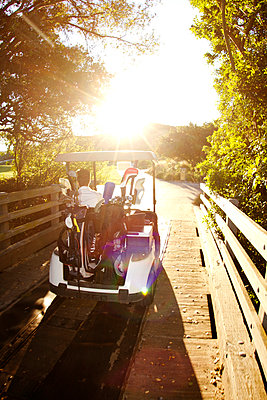 Man sitting in golf cart against clear sky - p1166m969817f by Cavan Images