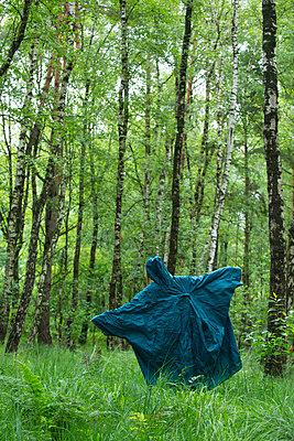 Frau im Wald - p427m1077673 von R. Mohr
