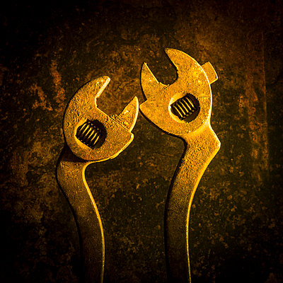 Screw-wrenches - p813m1488194 by B.Jaubert