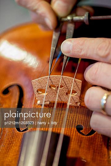 Arbeit an der Geige - p1212m1203323 von harry + lidy