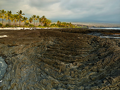Volcanic rocks and trees at Puuhonua O Honaunau National Historical Park against cloudy sky - p300m2131776 by Christian Vorhofer