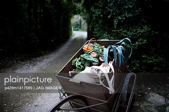 p429m1417589 von JAG IMAGES
