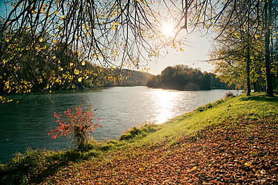 autumn atmosphere at Isar river - p300m885150f by Sandra Rösch