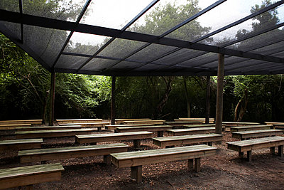 Rows of Wood Benches Under Glass Roof - p694m663718 by Maria K