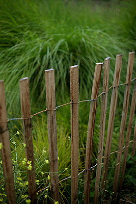 Old wooden fence in garden - p1028m1044758 by Jean Marmeisse