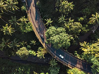 Indonesia, Bali, Ubud, Aerial view of bridge - p300m2042716 von Konstantin Trubavin