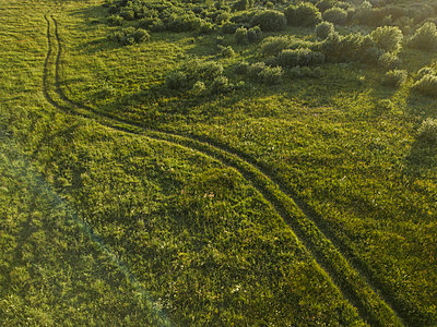 Aerial view of a road between meadows, Tikhvin, Russia - p300m2275912 by Konstantin Trubavin