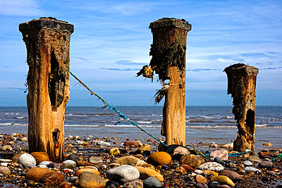 Remnants of mooring posts, Humberside, England - p4426839f by Design Pics