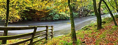 River Dart, Dartmoor National Park, Devon, England, United Kingdom, Europe - p871m1105936 by John Alexander