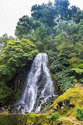 Achada waterfall in Achada, Island of Sao Miguel, Azores, Portugal, Atlantic - p871m2019809 by Michael Runkel