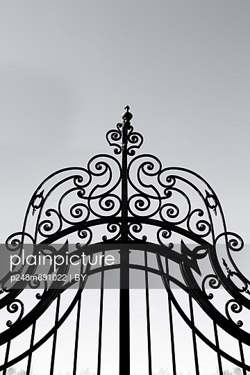 Gate of wrought iron - p248m891022 by BY