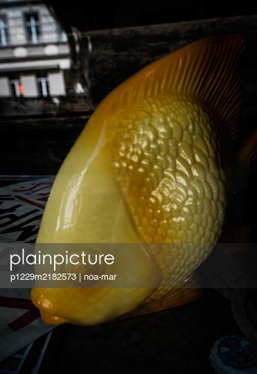 Porcelain fish - p1229m2182573 by noa-mar
