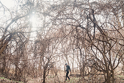 Woman Walking Through Tangled Forest - p1262m1082798 by Maryanne Gobble