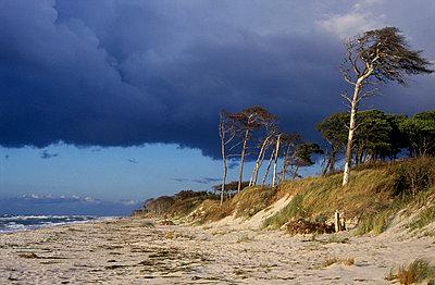 Gewitter über dem Strand - p726m740199 von Katarzyna Zommer