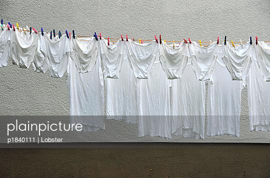 Unterwäsche vor grauer Hauswand - p1840111 von Lobster