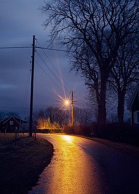 Landstraße bei Nacht - p1124m1193542 von Willing-Holtz