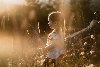 Carefree girl walking amidst dandelion field during sunny day - p1166m1534198 by Cavan Images