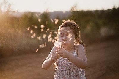 Playful girl blowing dandelion on field - p1166m1534201 by Cavan Images