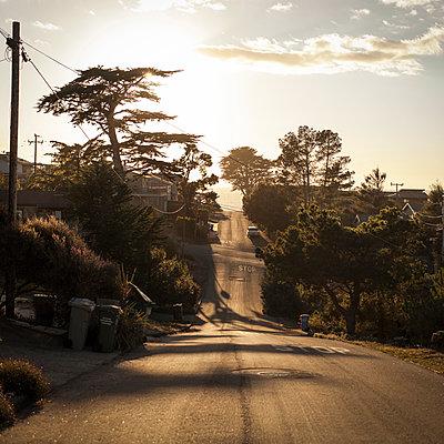 Wellige Landstraße im Abendlicht - p1324m1165138 von michaelhopf