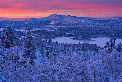 Winter landscape at sunset - p312m2119354 by Johner