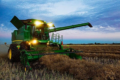 A fully loaded combine with its lights on arm out for transer, harvesting canola after sunset; Legal, Alberta, Canada - p442m2111504 by LJM Photo