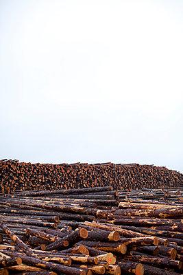 p1424m1501551 von Woods Wheatcroft