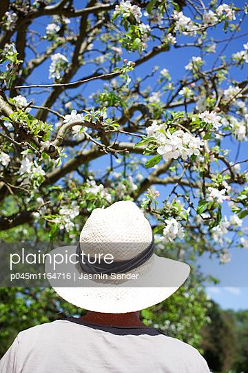 Gärtner im Frühling - p045m1154716 von Jasmin Sander