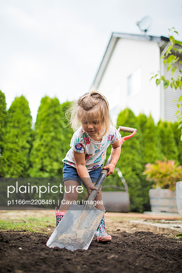 Cute blonde toddler using shovel in her backyard. - p1166m2208481 by Cavan Images