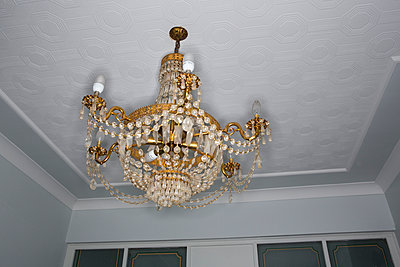 Chandelier with energy saving bulb - p1057m890539 by Stephen Shepherd