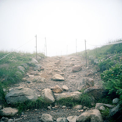Montain trail at the Mount Asahi - p1083m880379 by Alain Greloud