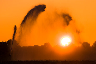 Irrigation during sunrise - p1144m967396 by Karin Broekhuijsen